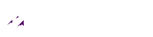 Purple Mountain Investigations
